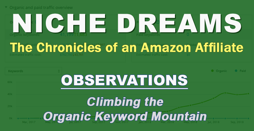 Niche Dreams: Observations – Climbing the Organic Keyword Mountain