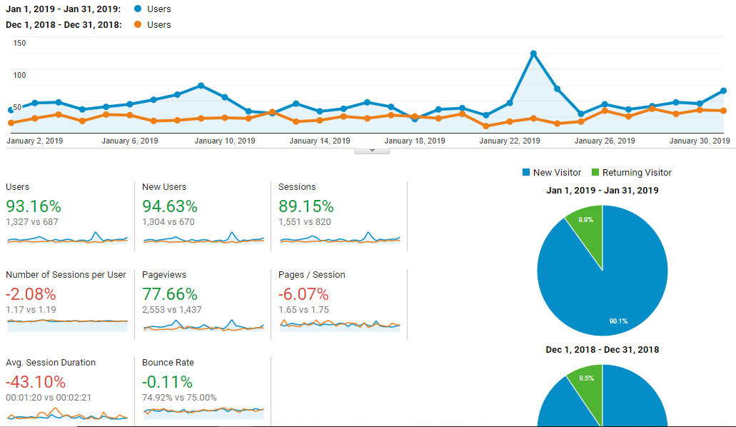 Google Analytics Traffic - January