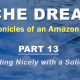 Niche Dreams – Part 13: Rebounding Nicely with a Solid Month