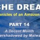 Niche Dreams – Part 14: A Decent Month Overshadowed by Malware