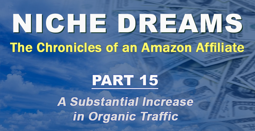 Niche Dreams – Part 15: A Substantial Increase in Organic Traffic